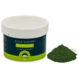 algue klamath 120 grammes poudre